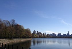 Nature - a reservoir, which provides a habitat for turtles and birds, and is surrounded by flowering trees, coexisting with the backdrop of some of the tallest buildings in the world at the Jacqueline Kennedy Reservoir in Central Park, New York City. Copyright (C) Pursue Natural