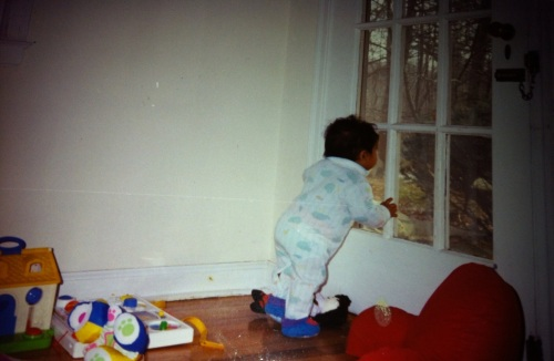 Parenting - a toddler yearning to explore the beautiful world outside. Copyright (C) Pursue Natural