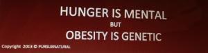 Hunger Obesity Brain