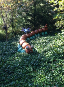 A pumpkin caterpillar at the New York Botanical Garden 2013. Copyright (c) PursueNatural